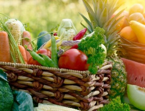 Visit Our Wellness Center to Discuss How Nutrition Impacts Your Health